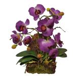 Lucky Reptile Hanging Orchid Lavender, IF-17