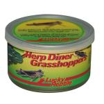 Lucky Reptile Herp Diner Grasshoppers Med. HDC-21